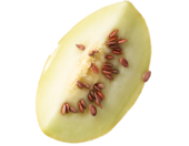 1435602217 watermelon seed oil image 170x132